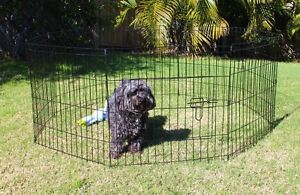 PLAY PEN DOG PUPPY ANIMALS STEEL FRAME MEDIUM Casuarina Tweed Heads Area Preview