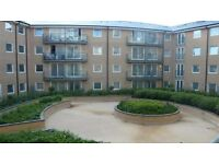 Exceptional 2 Bedroom 2 Bathroom Apartment With Onsite Gym and Secure Parking Located In Feltham