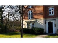 2 bedroom flat in Rockford Gardens, Great Sankey, Warrington, Cheshire, WA5