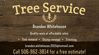 QUALITY TREE SERVICE AT AFFORDABLE RATES!!