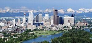 Return flight Toronto to Calgary