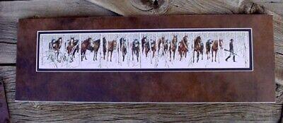 2 Bev Doolittle Art Books & 4 Big Prints Western Horse & Native American Indian