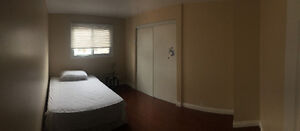 Beautiful Newly Renovated Rooms for rent in Scarborough