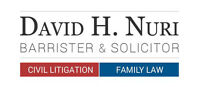 FAMILY LAWYER and CIVIL LITIGATION LAWYER