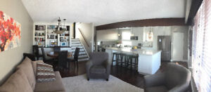 Beautiful 4 bedroom home for rent beginning in July-Aug-Sept