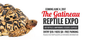 Gatineau and Ottawa Reptile Exotic Pet Expo June 04 th