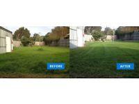 Local gardeners-Grass cutting - Garden maintenance - Hedge cutting - Garden tidy up LONDON