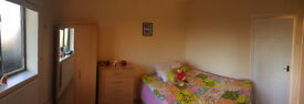 Spacious double room close to Barnes station. £150 per week including all bills