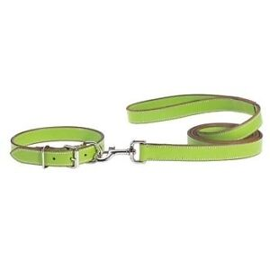 Brand New Leather Dog Collar & 6' Leash - Size XL - with TAGS