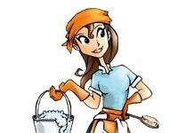 Regular cleaning 10£ per hour