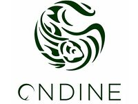 Experienced Bartender Requiried For Ondine Restaurant
