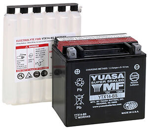 NEW Yuasa YTX14-BS Maintenance-Free Battery FREE SHIPPING