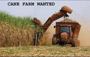CANE FARM WANTED - 200 TO 400 ACRES PREFERRED Lismore Lismore Area Preview