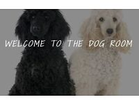 The Dog Room - Professional Dog Grooming Service