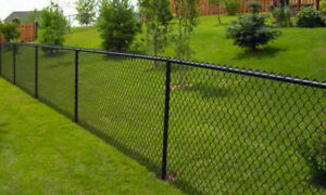 Looking for black chain link fence