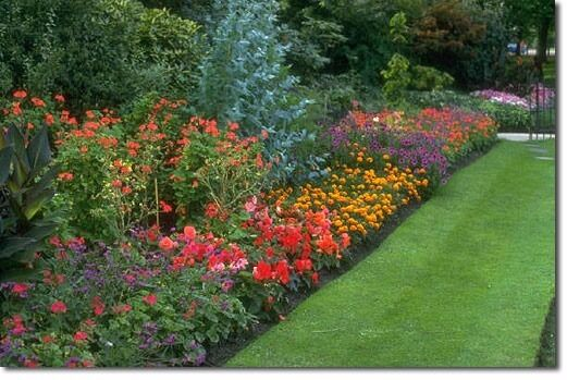 Gardening Landscaping Fence Patio Work Painting Pruning