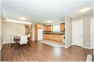 Bright and Open 3-Bedroom Apartment in Kitchener (November 1)