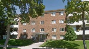 1 Bedroom Suite Near Whyte Ave & University 10818-81 Ave
