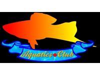 Aquatics Plus Club