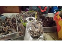 Job Lot Of Decorative Pine Cones (can be sold at car boot sale/fetes/fairs etc)