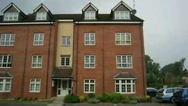 Lovely 2 bed Flat for rent in Harlequin Court, Whitley, Coventry