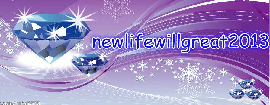 newlifewillgreat2013