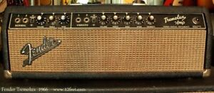 Fender Tube Amp Project wanted