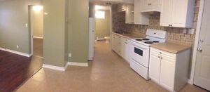 Newly Renovated 1 bedroom basement Apt in quite building
