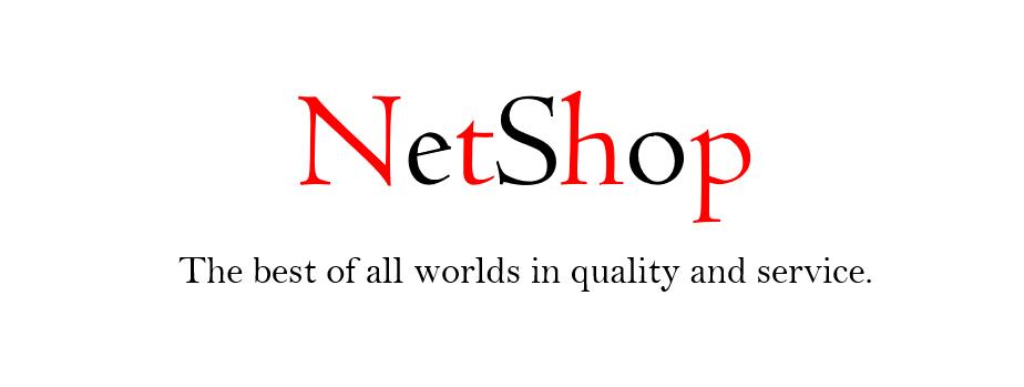 NetShop Inc