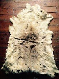 Real Reindeer Fur Rug