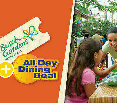 BUSCH GARDENS TAMPA TICKET & ALL DAY DINING $89 A SAVINGS PROMO DISCOUNT TOOL