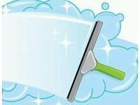 WINDOW, GUTTER, PRESSURE WASHING & CARPET CLEANING