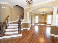 Professional Painter & Decorator/ Handyman