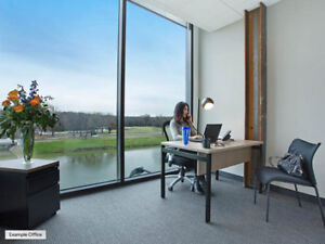 Windowed Office Suite for Business Professional Now Leasing