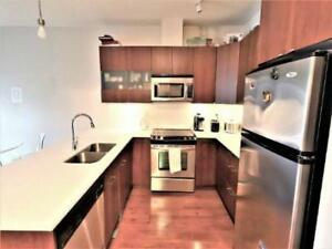 Large Furnished Studio to Rent-Just steps to SkyTrain and SFU