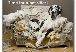 Pet services,  boarding, pet sitting, laughing, dog walking