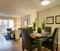 Newly Renovated over 1000 sq ft - Amazing location and amenities