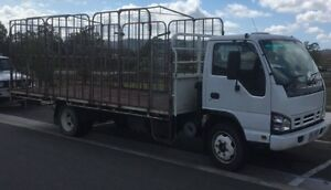 Truck hire $400 weekly and discount for long term hire Veresdale Scrub Ipswich South Preview