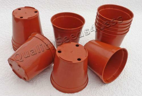 Small Plastic Plant Pots Ebay