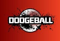 Co-Ed adult dodgeball looking for players.
