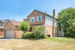 Ajax 2 Bedroom Basement Apartment for Rent- Westney and Kingston