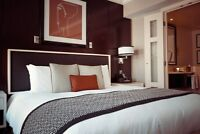 Hotel Anmimistrators Pest Solutions Available