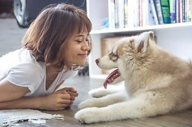 Pawshake is seeking Pet Sitters and Dog Walkers! Sign up today! Free insurance incl. Hastings.