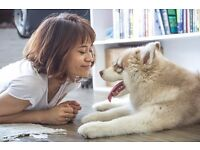 Pawshake is seeking Pet Sitters and Dog Walkers! Sign up today! Free insurance incl. Cheltenham.