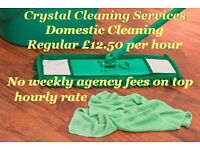 Professional Domestic Cleaning One-off £13.50 Per hour * Carpet Cleaning * End of Tenancy Cleaning