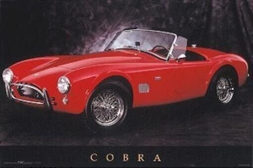 COBRA CONVERTIBLE 24x36 AUTO POSTER NEW/ROLLED!