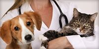 Veterinary Receptionist/Assistant