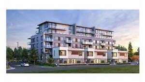 New 1 Bedroom Unit with A/C on Cambie and 35th with parking!