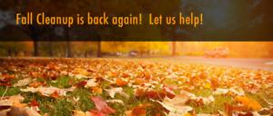 Fall Yard Clean Up (Hull or Gatineau)