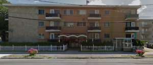 Appartment a Louer / Apartment for Rent